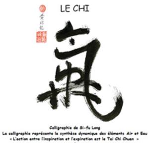 Calligraphie Si-Fu Lang