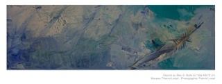 Obra em azul - 6 |Oeuvre au Bleu - 6 |Óleo sobre tela | Huile sur toile Photo Patrick Loisel